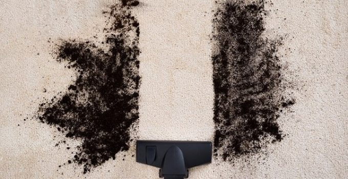 How to Get Tattoo Ink Out Of Carpet – Brilliant Ways