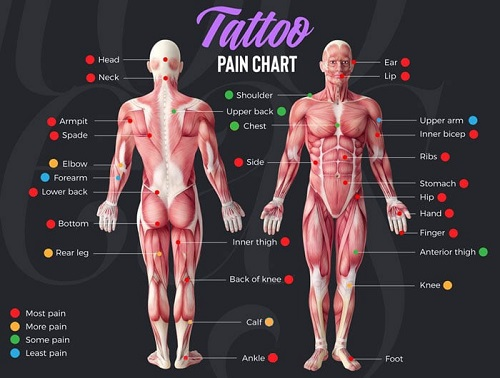 Tattoo-Pain-Chart